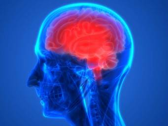 Brain injury: New target may help eliminate inflammation