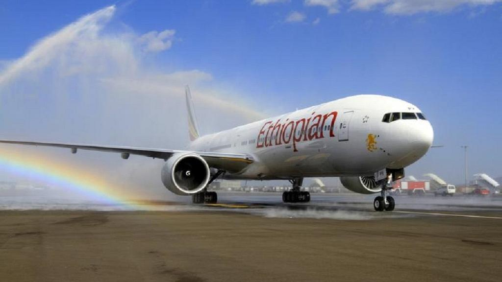 Ethiopian crash hub: Preliminary report on incident expected 'soon' - CEO