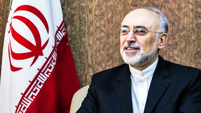 Joint Press Statement following today's meeting between Commissioner Arias Cañete and Vice President Salehi, Head of the Atomic Energy Organisation of Iran (AEOI).